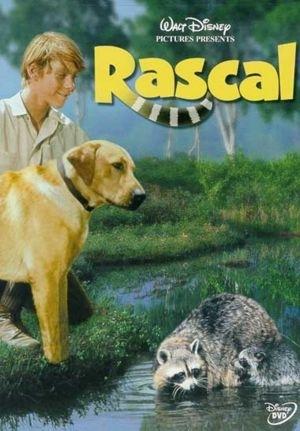La locandina di Rascal, l'orsetto lavatore