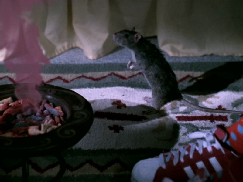 Una scena tratta dall'episodio 'Le streghe di Sunnydale' di Buffy - L'ammazzavampiri