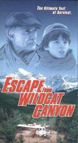 La locandina di Fuga da Wildcat Canyon