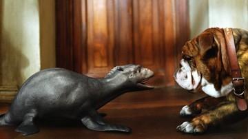 Crusoe, il drago marino di The Water Horse - La leggenda degli abissi