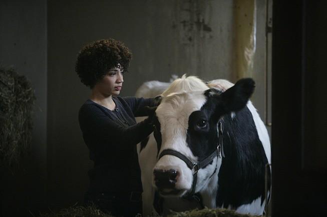Jasika Nicole in una scena dell'episodio The No-Brainer di Fringe