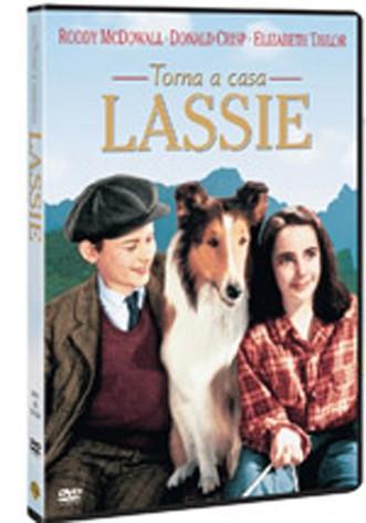 La copertina di Torna a casa Lassie (dvd)
