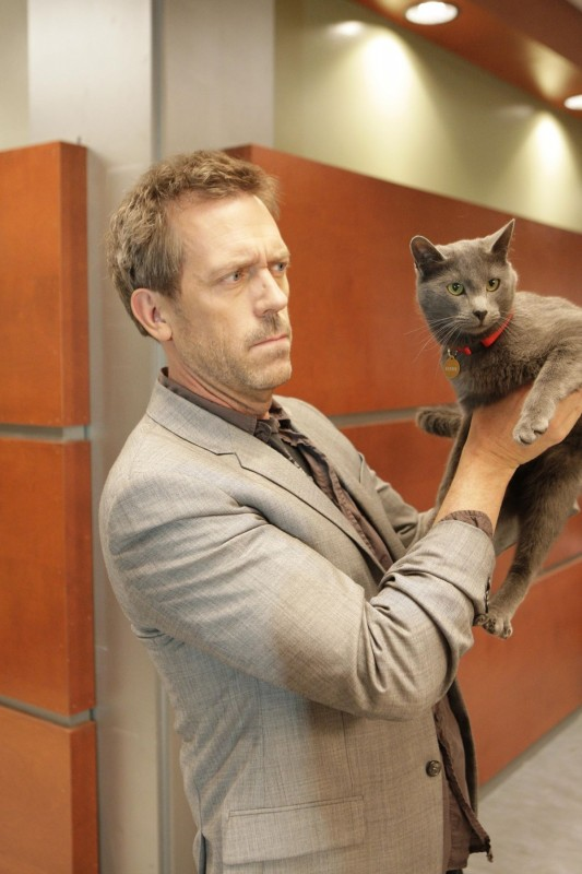 Hugh Laurie in una scena tratta da Here Kitty di Dr. House: Medical Division