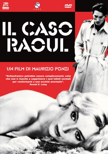 La copertina di Il caso Raoul (dvd)