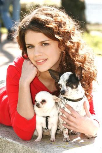 Pamela Saino adora i suoi minuscoli chihuahua