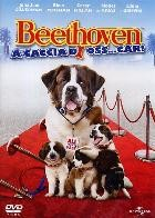 La copertina di Beethoven - A caccia di oss...car! (dvd)