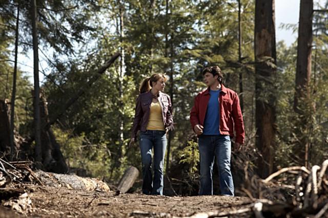 Erica Durance e Tom Welling nell'episodio ' La ragazza di Krypton ' della settima stagione di Smallville