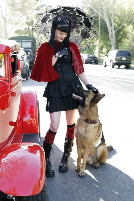 Cappuccetto rosso e nero: l'attrice Pauley Perrette per la serie
