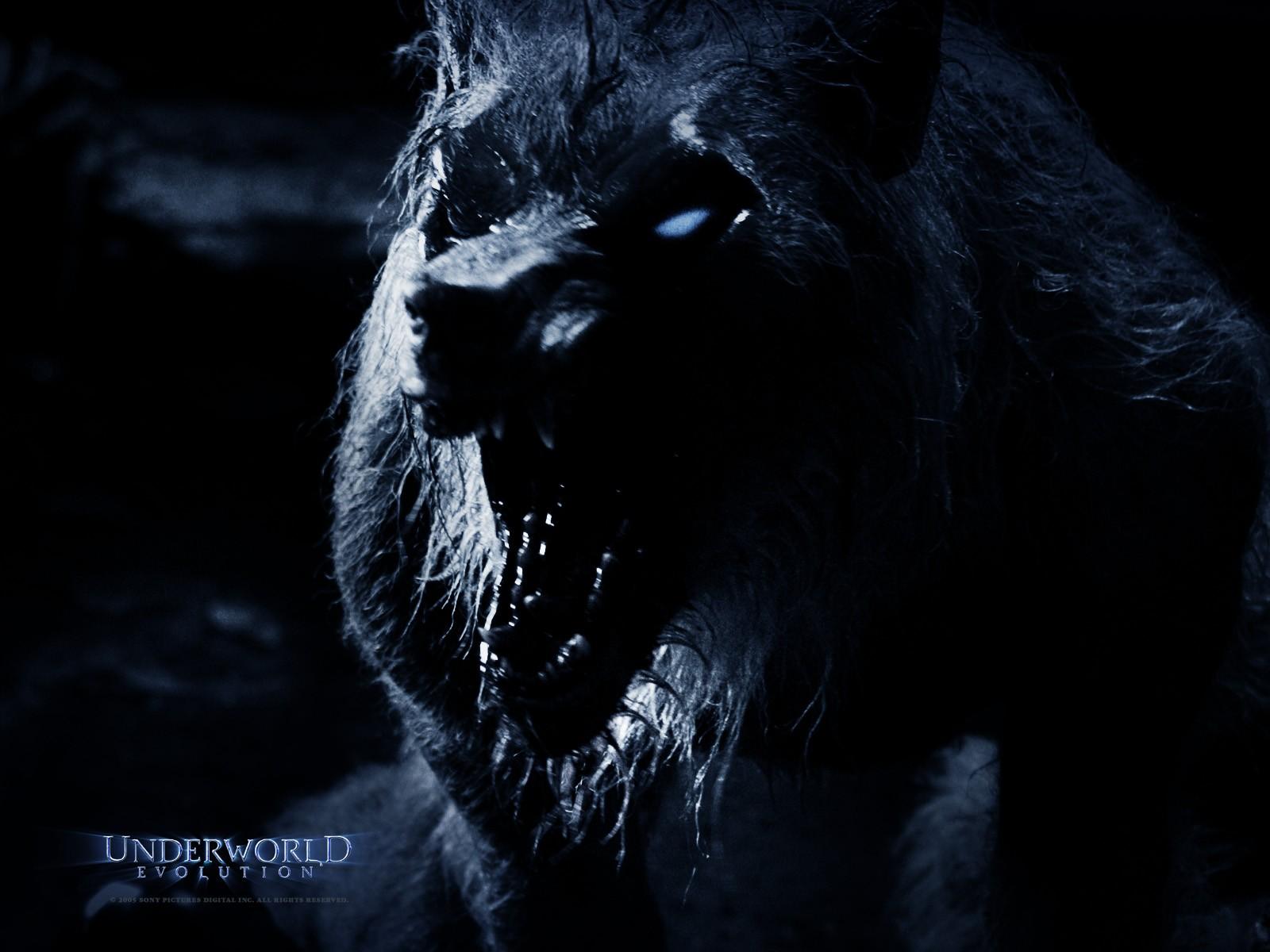 Un wallpaper di Brian Steele interpreta il licantropo William in 'Underworld: Evolution'