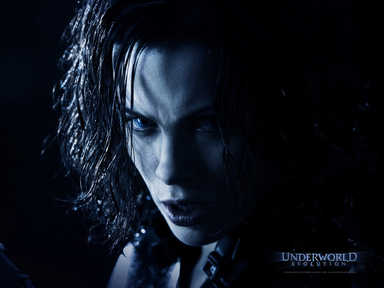 Un wallpaper di Kate Beckinsale che interpreta Selene in 'Underworld: Evolution'