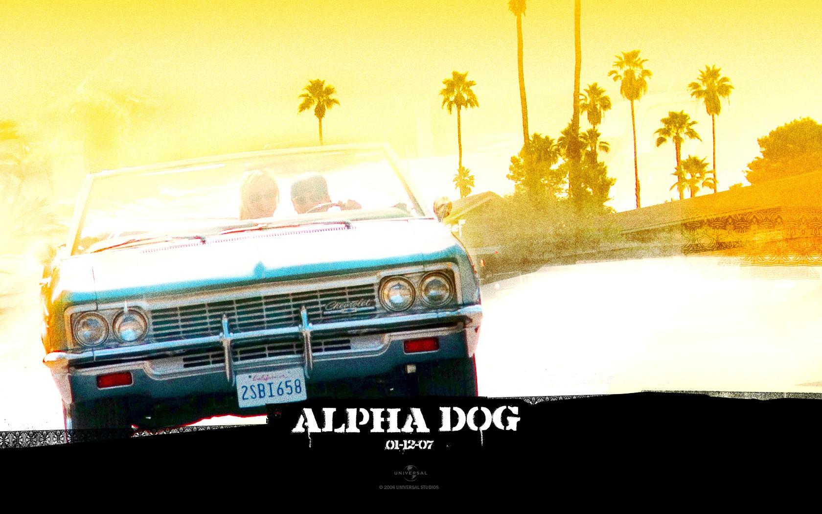 Un wallpaper del film 'Alpha Dog'
