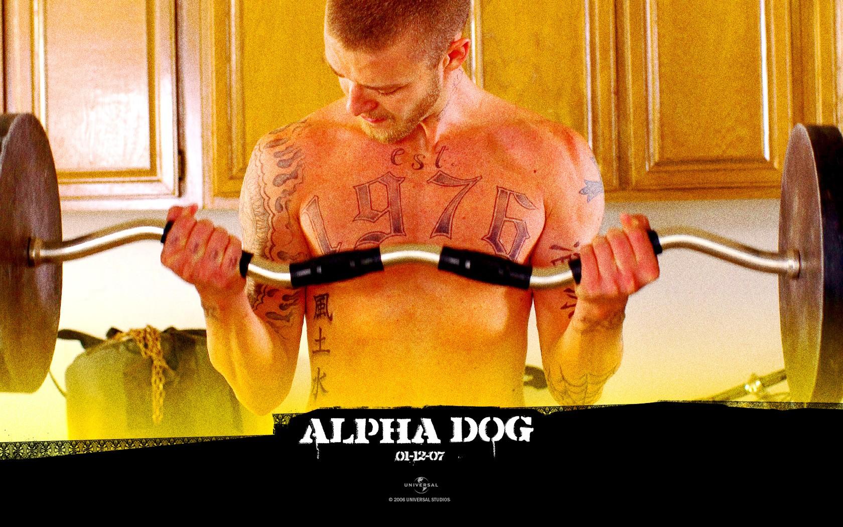 Un wallpaper di Justin Timberlake nel film 'Alpha Dog'