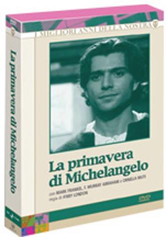 La copertina di La primavera di Michelangelo (dvd)