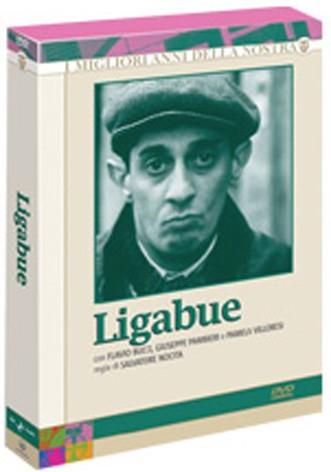 La copertina di Ligabue (dvd)