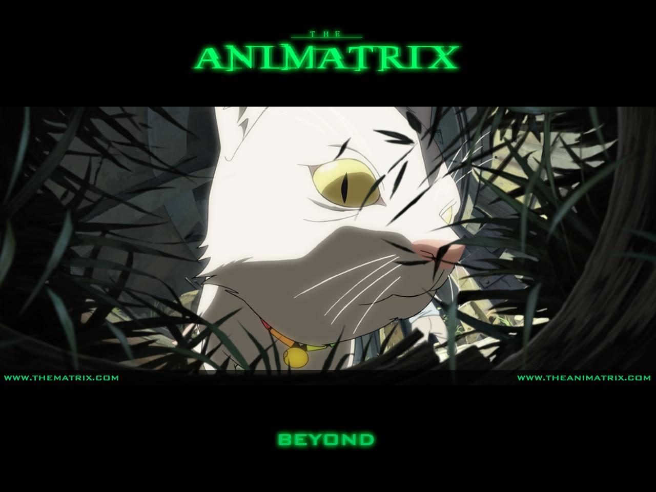 Un wallpaper dell'episodio 'Beyond' di Animatrix
