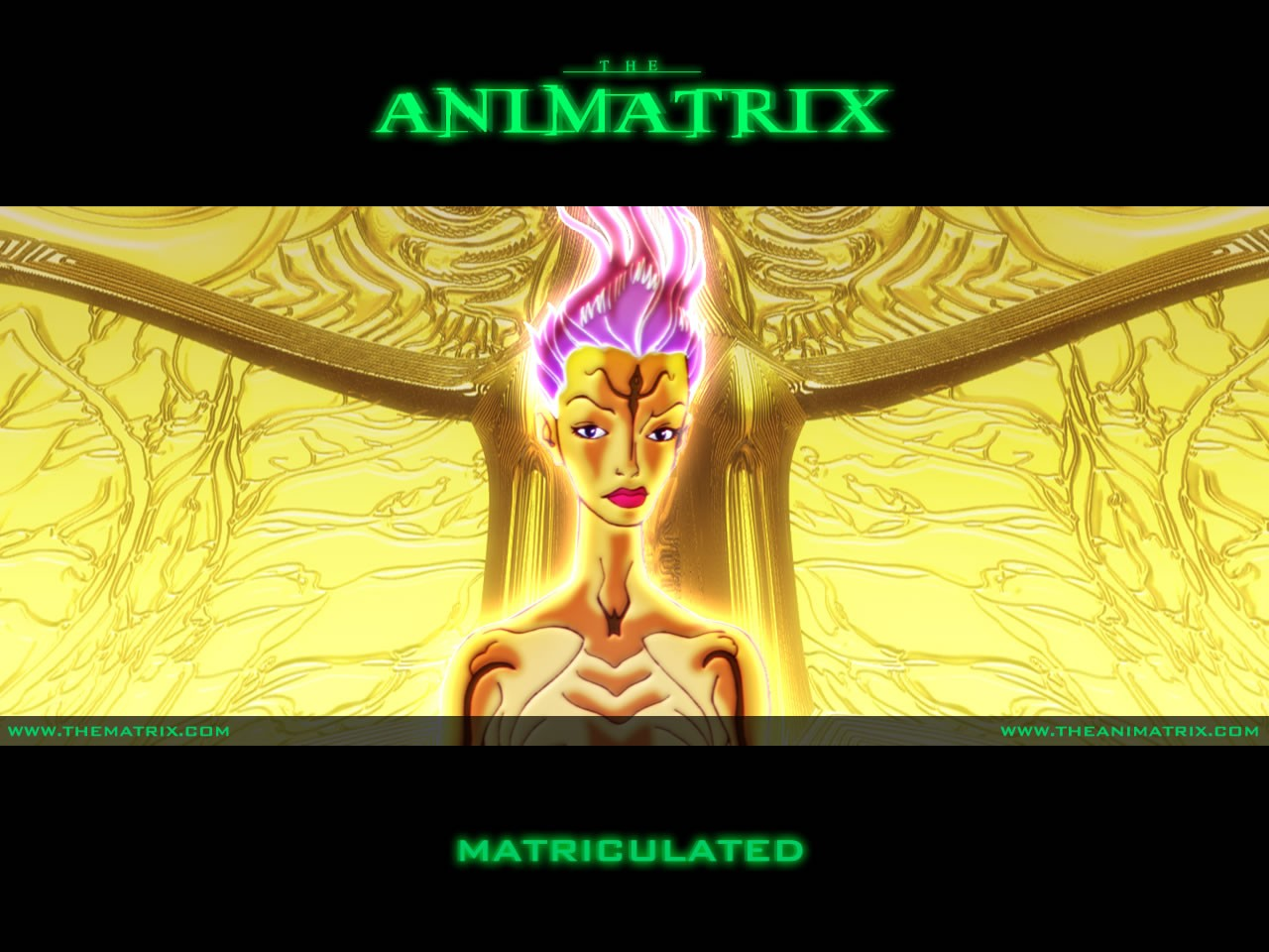 Un wallpaper dell'episodio 'Matriculated' di Animatrix