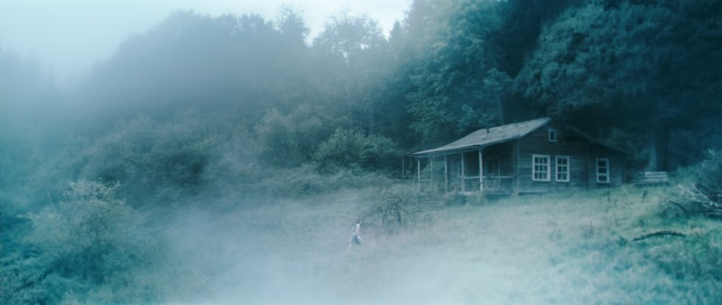 Una suggestiva sequenza del film Antichrist, di Lars Von Trier