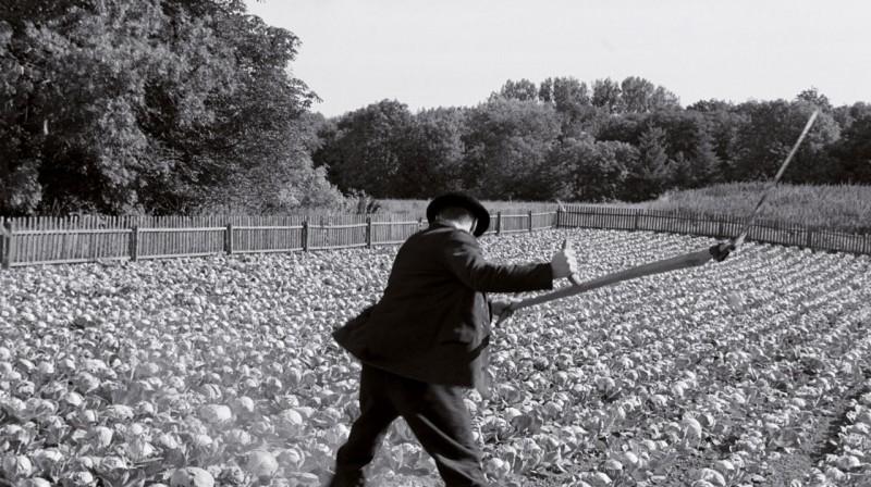 Una sequenza del film Il nastro bianco (Das Weiße Band, 2009)