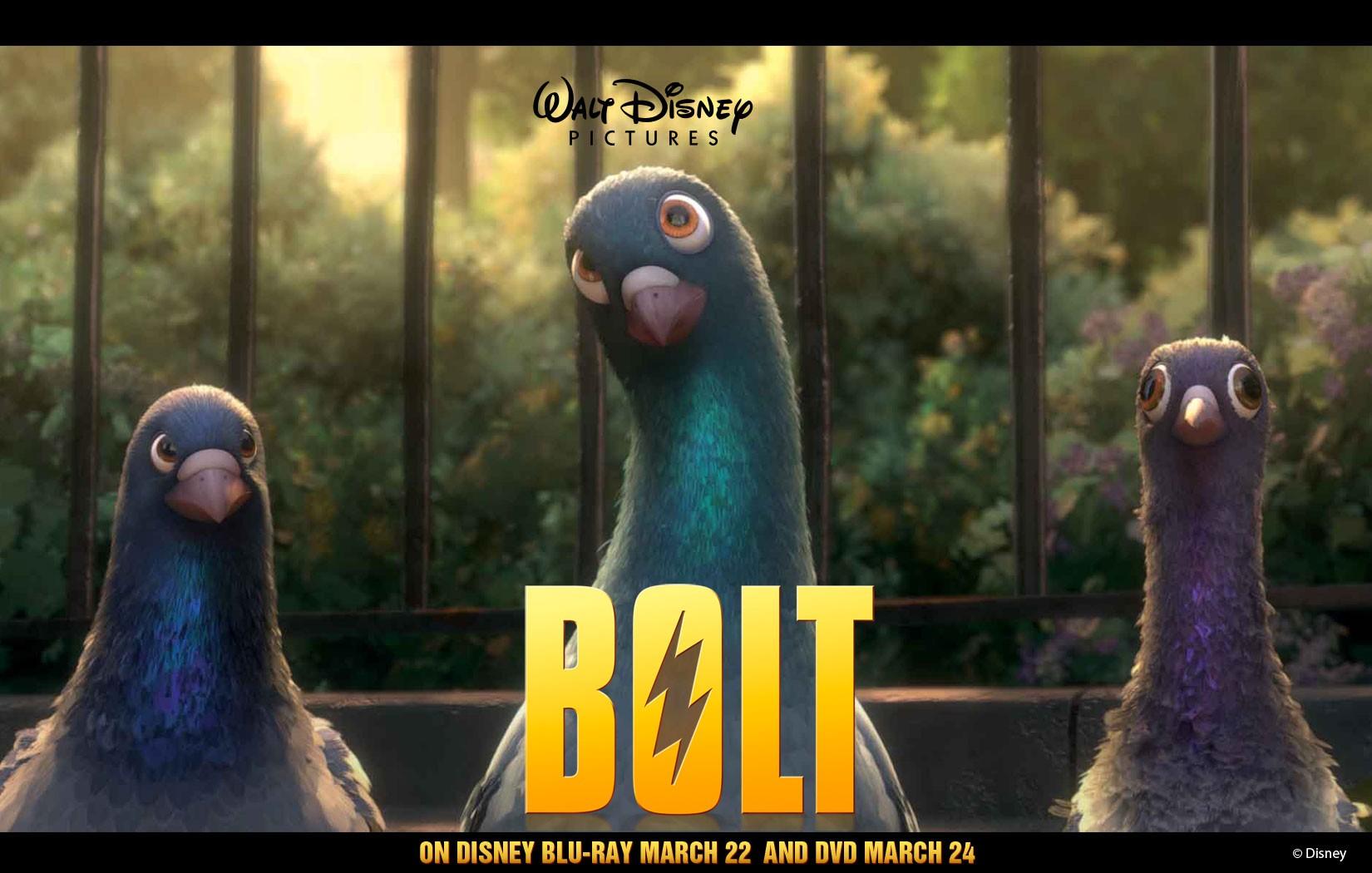 Un wallpaper dei 3 piccioni per pubblicizzare l'uscita in dvd e blu-ray del film 'Bolt'