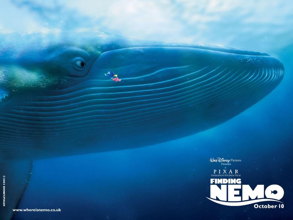 Un wallpaper della balena con Marlin e Dory nel film 'Alla ricerca di Nemo'