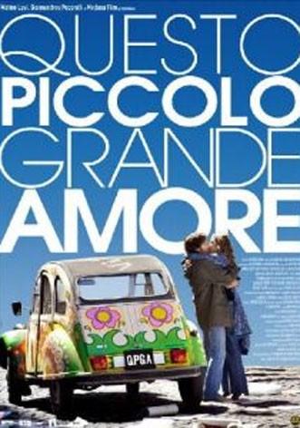La copertina di Questo piccolo grande amore (dvd)