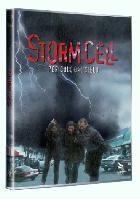 La copertina di Storm Cell - Pericolo dal cielo (dvd)