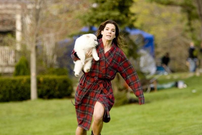 Sandra Bullock in una scena della commedia Ricatto d'amore