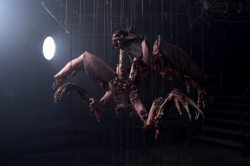 Un'immagine del film Anamorph