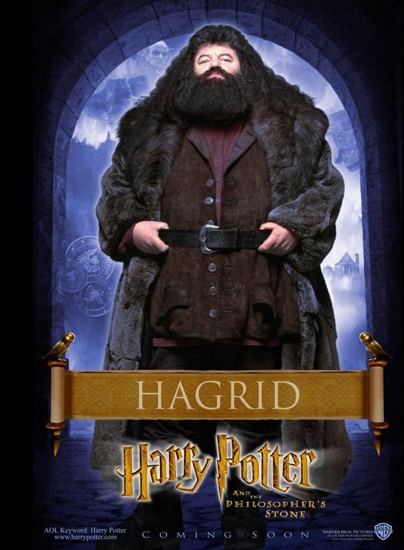 Un character poster dedicato a Rubeus Hagrid per il film Harry Potter e la Pietra Filosofale