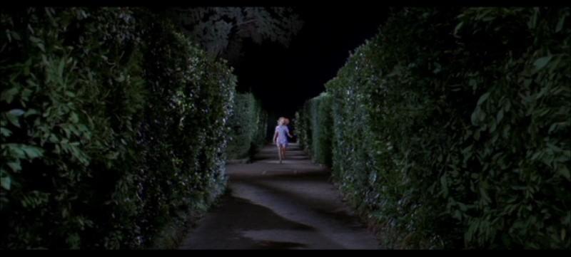 Una scena del film Quattro mosche di velluto grigio (1971)