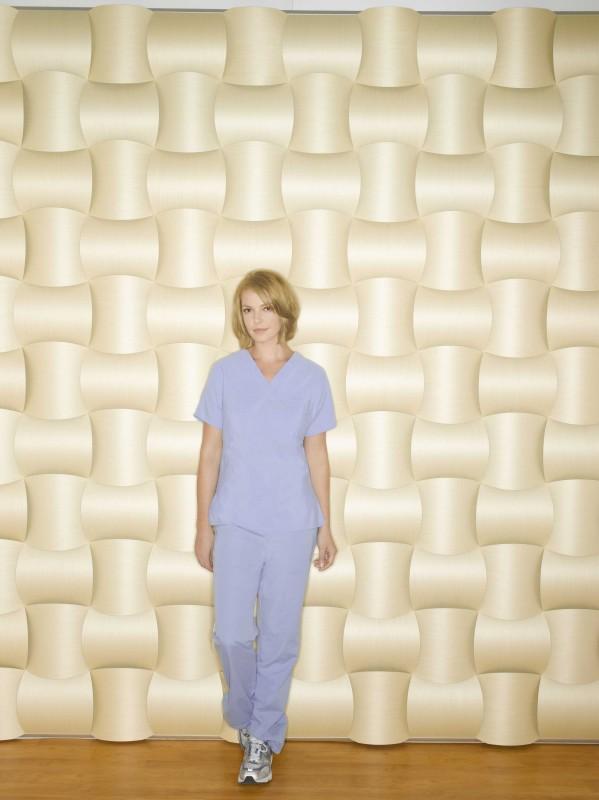 Una foto di Katherine Heigl  per promuovere la sesta stagione di Grey's Anatomy