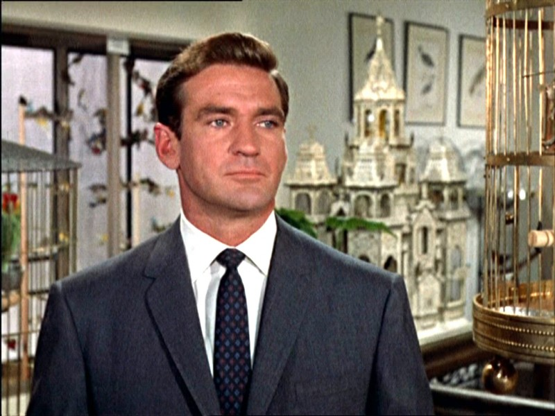 Rod Taylor in una scena del film Gli uccelli ( 1963 )