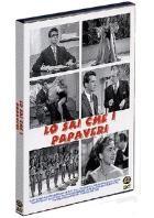 La copertina di Lo sai che i papaveri (dvd)