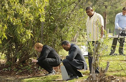 CSI Miami: un'immagine del cross-over con CSI Las Vega, Bone Voyage