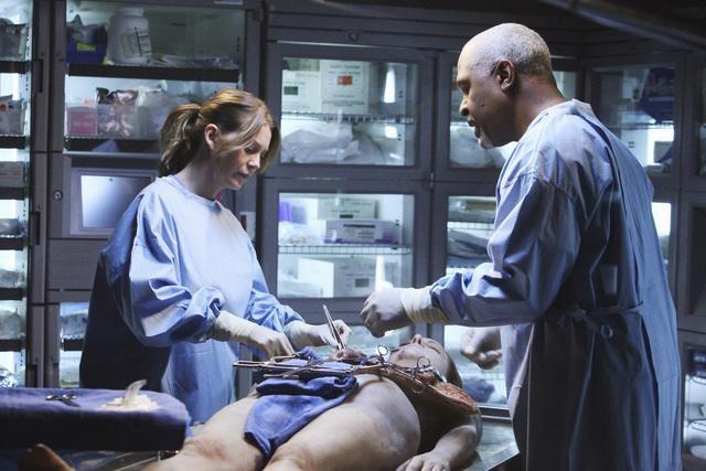 Grey's Anatomy: James Pickens Jr. ed Ellen Pompeo nell'episodio Holidaze