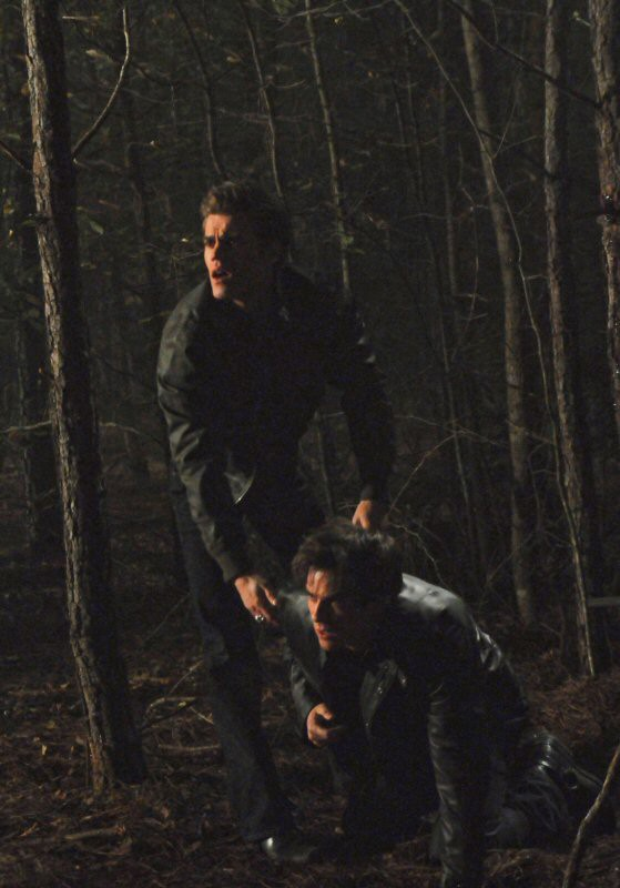 Paul Wesley soccorre Ian Somerhalder nel bosco nell'episodio History Repeating di The Vampire Diaries