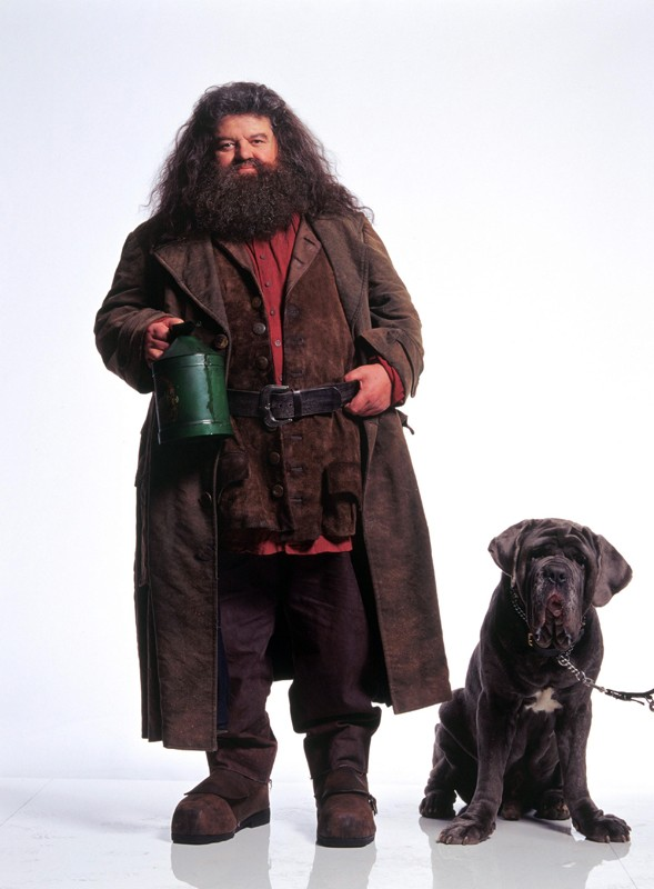 Rubeus Hagrid (Robbie Coltrane) e il suo cane Thor in una foto promozionale per il film Harry Potter e la Camera dei Segreti