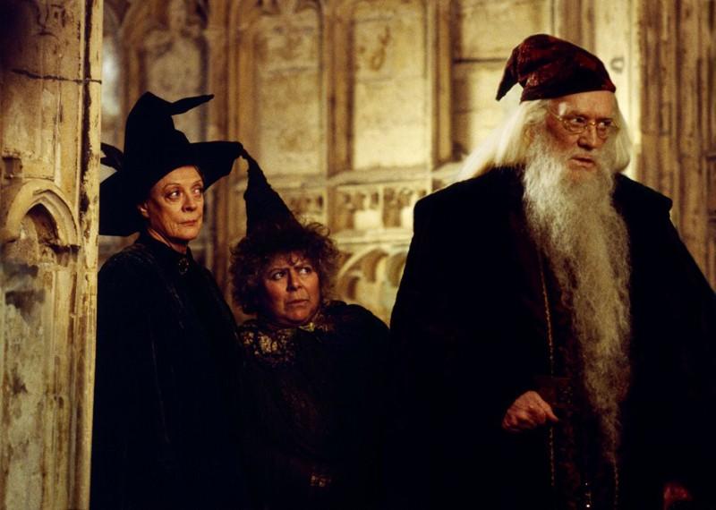 Harry Potter Camera Dei Segreti : Harry potter e la camera dei segreti su italia il film con