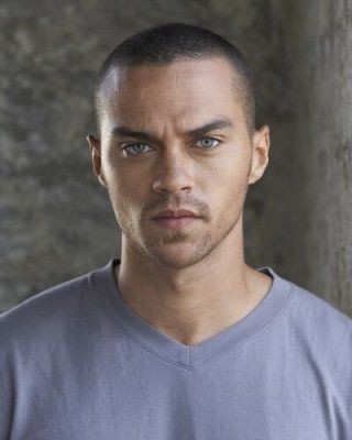 Una foto di Jesse Williams