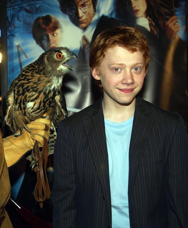 Rupert Grint posa con un gufetto alla premiere del film Harry Potter e la Camera dei Segreti, a Los Angeles, il 14 Novembre 2002