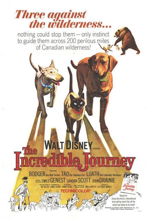 Locandina del film L\'incredibile avventura ( 1963 )