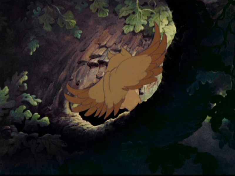 Il gufo in una scena del film d\'animazione Bambi (1942)