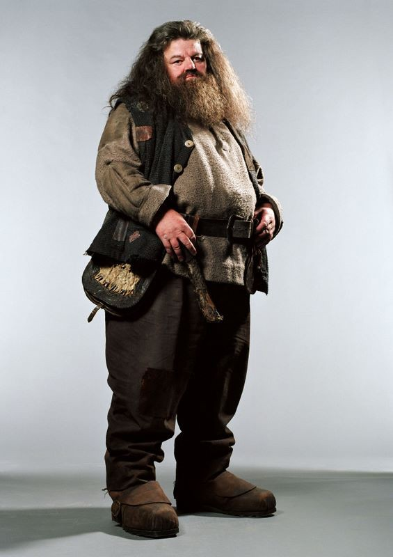 Harry Potter e il Prigioniero di Azkaban: un'immagine dell'ex guardiacaccia Hagrid (Robbie Coltrane)