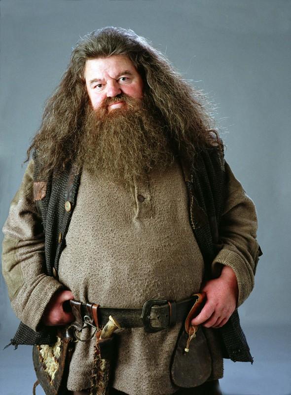 Harry Potter e il Prigioniero di Azkaban: un'immagine di Robbie Coltrane