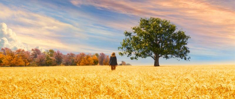 Saoirse Ronan in un'immagine suggestiva del film Amabili resti