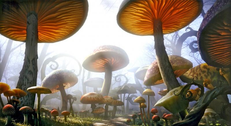 Un'immagine del fantastico Sottomondo di Alice in Wonderland di Tim Burton