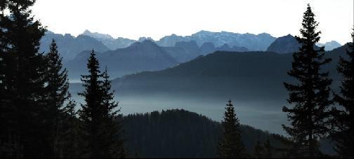 Una suggestiva immagine del paesaggio in cui è ambientato l'horror Shadow