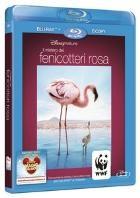 La copertina di Il mistero dei fenicotteri rosa (blu-ray)