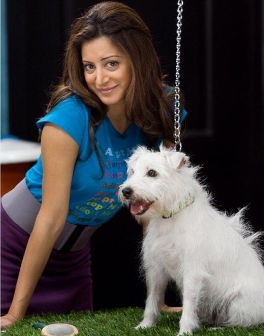 Noureen DeWulf nella commedia Piacere, sono un po' incinta