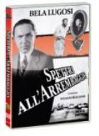 La copertina di Spettri all'arrembaggio (dvd)
